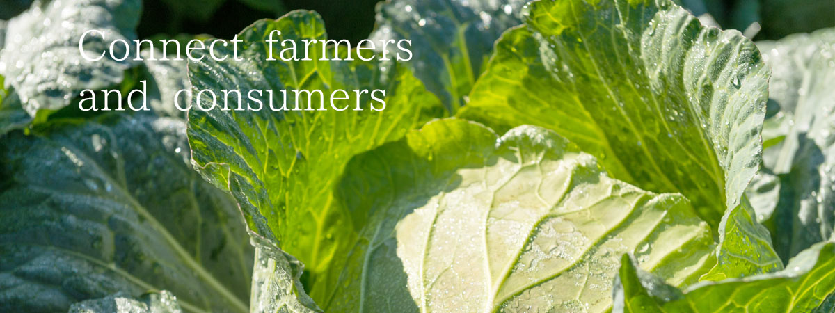 Connect farmers and consumers